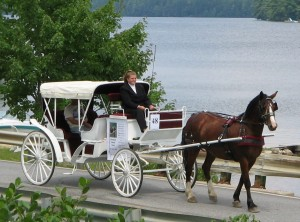 Horse and Carriage next to lake