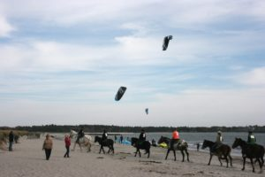 Horseback riders and kite boarders on the beach