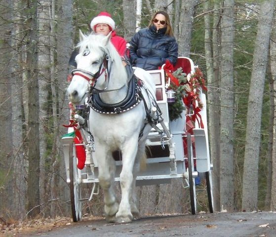 Wagon and Sleigh Rides