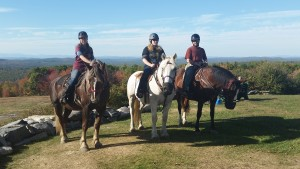 Horseback Riding on Hackers Hill 2015