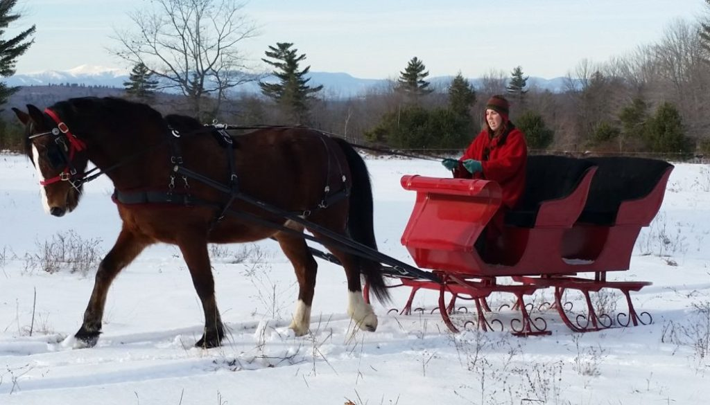 Sleigh Ride Gift Certificates 2017/2018