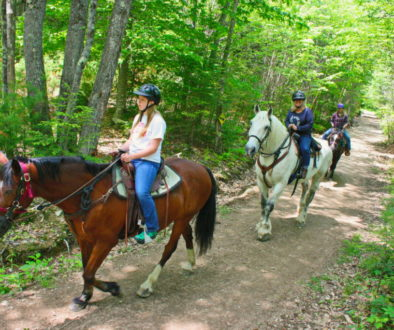 Spring Trail Ride Deals and a Peek at Summer!