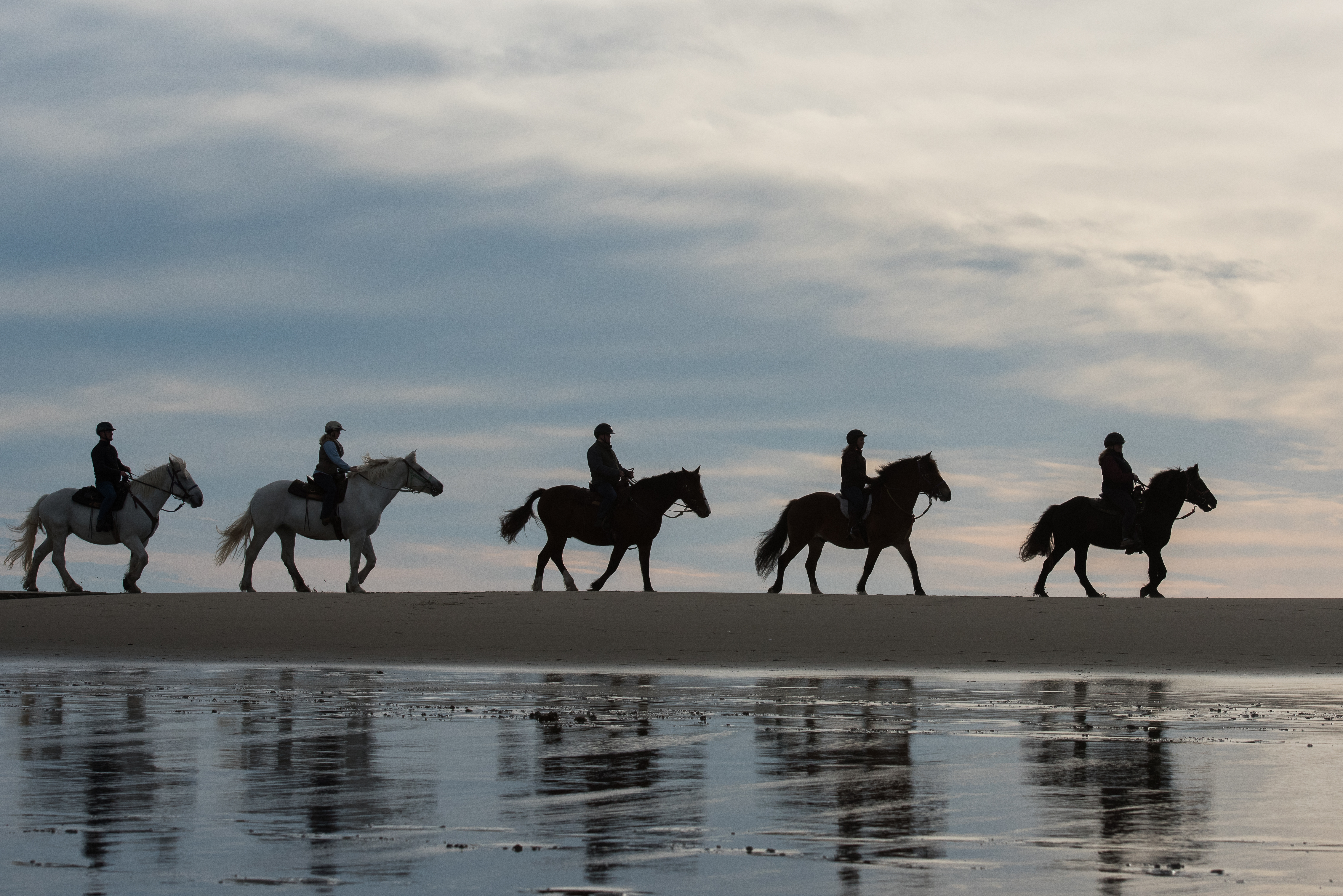 Beach Trail Rides at Popham and Pine Point