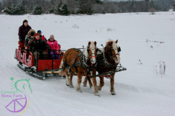 Sleigh RIdes at Carousel Horse Farm